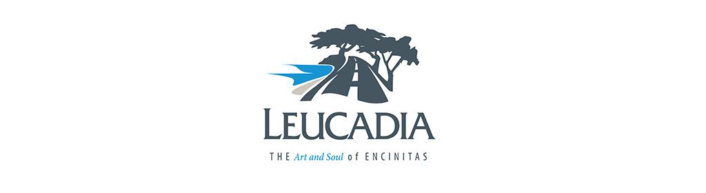Leucadia Drywall Installation